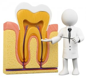 Root Canals Mount Prospect, IL